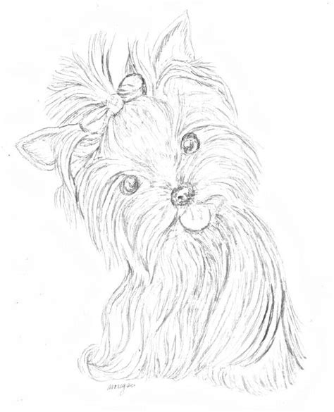 coloring pages yorkie free printable animal coloring pages coloring page yorkie