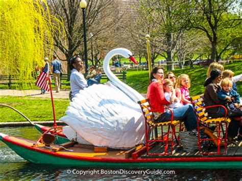 restaurants near swan boats boston boston attractions what to see and do boston discovery