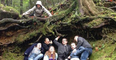tree  familiar students recreate famous
