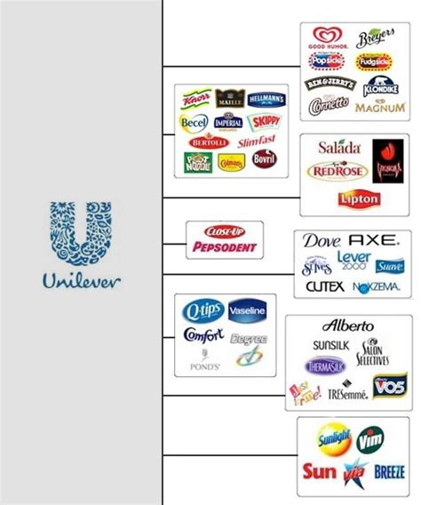 layout strategy of unilever 51 best images about strategy options for globalization on