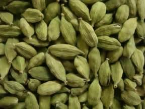 green cardamom pods fresh large pods elettaria