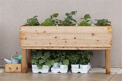 Diy Wood Planter Box by How To Build An Elevated Wooden Planter How Tos Diy