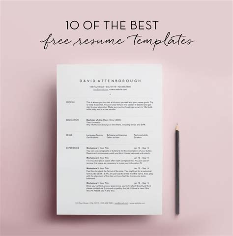 Resume Template Ideas by 17 Best Ideas About Resume Templates On Resume
