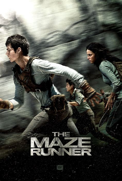 film the maze runner online subtitrat 2014 the maze runner 2014 dvd planet store