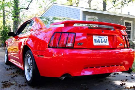 mustang names custom license plate ideas mustang forums at stangnet