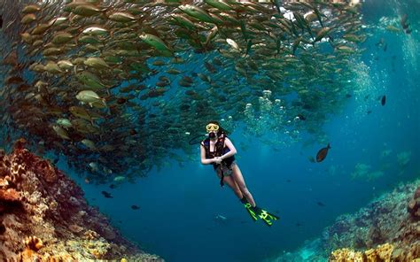 best scuba diving spots in the world best scuba diving destinations for beginners in southeast