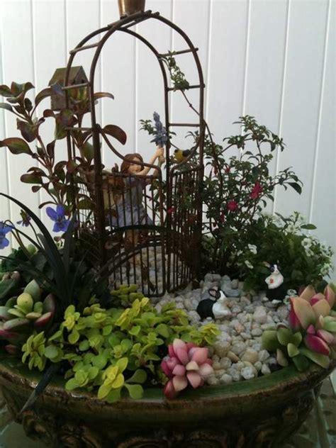 growing  miniature garden   home