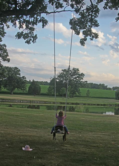 pony swing outdoor horse and saddle swing a spotted pony
