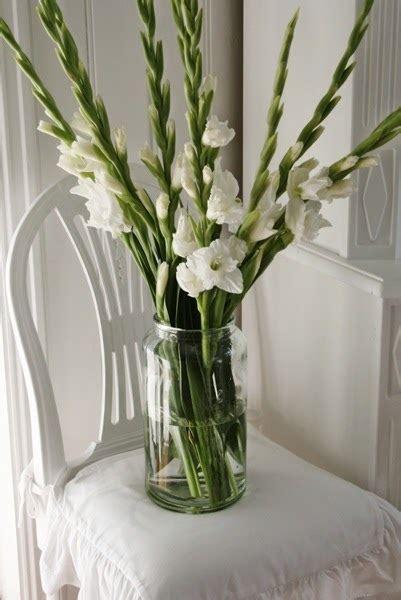 vibeke design gladioler til hverdag fest