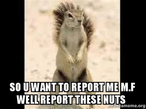 These Nuts Meme - so u want to report me m f well report these nuts make