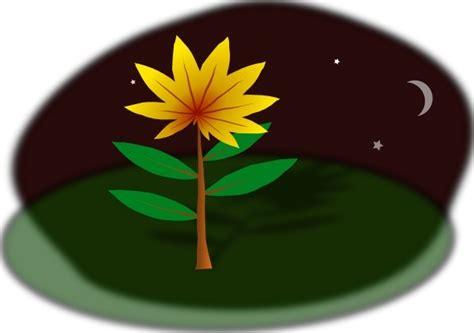 flower  night clip art  vector  open office drawing svg svg vector illustration
