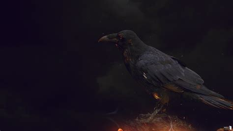 wallpaper black deviantart wallpaper dark crow by nablo92 on deviantart