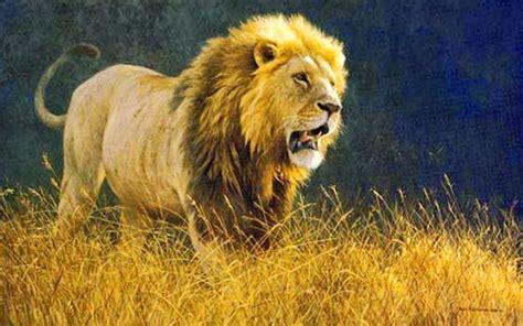 imagenes realistas de animales im 225 genes arte pinturas cuadros de paisajes realistas con