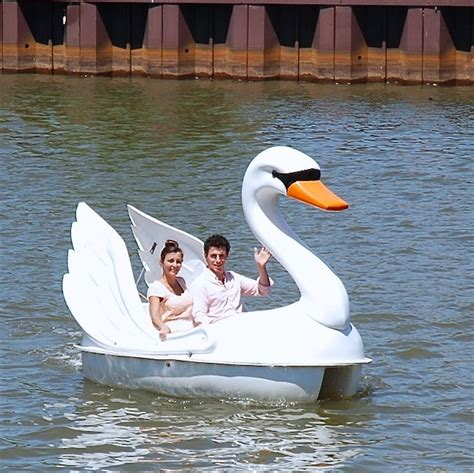 swan pedal boat swan paddle boat bing images