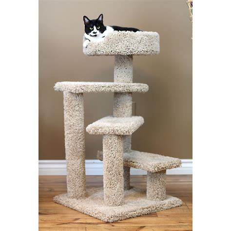 cat tree best images collections hd for gadget windows cat tree condos best images collections hd for gadget