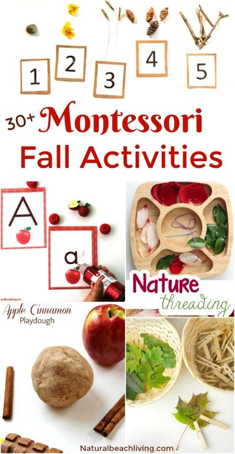 montessori printable books 30 amazing montessori fall activities for preschool and