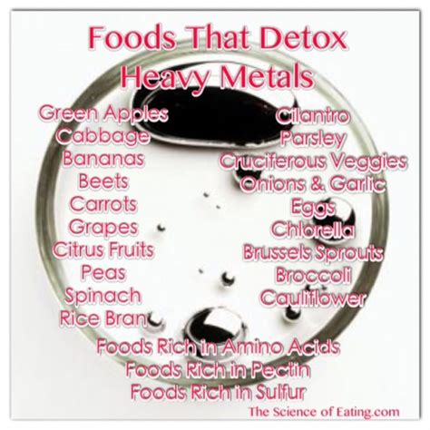 Foods That Help Detox Your Of Heavy Metals by Detoxing Heavy Metals