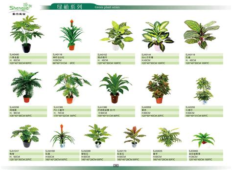 decorative plants with name in india 2014 mini artificial plant home indoor decorative