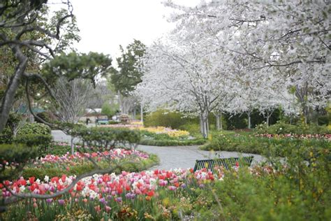 Pa Botanical Gardens Pennsylvania Garden Tops 10 Best Botanical Gardens List Home Garden Lancasteronline