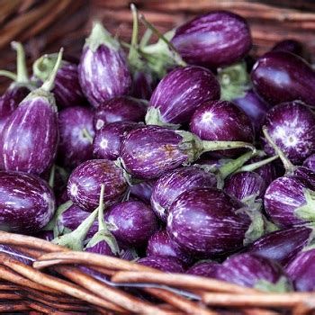 Nightshade Detox by Are Nightshade Vegetables Bad For You