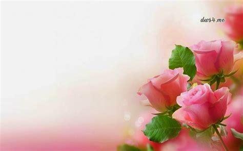 wallpaper bunga dan love mimpi ku nyata sempurna wallpaper gaul dan cantik