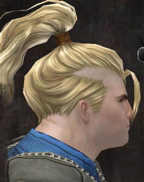 Gw2 Hair Style Kits by Gw2 New Hairstyles In Makeover Kits Dulfy