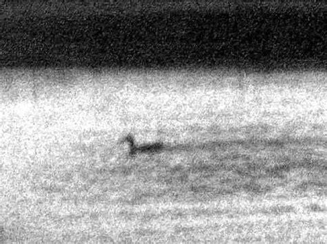 lunette de hutte vision nocturne essai monoculaire de vision nocturne equinox z 6x50 224 la