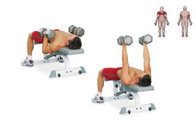 dumbbell bench drop workout a coach
