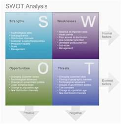 chan hoi ki comp326 bpr week 3 strategic framework