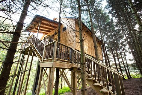 treehouse cabins in berlin ohio ohio amish country lodging whispering pines tree house