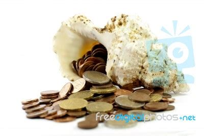 Nbc Shells Out Money For Royalty by Money Shell Stock Photo Royalty Free Image Id 10029142