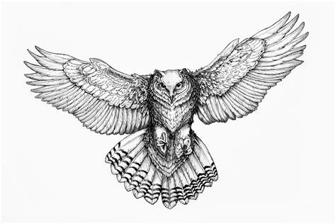 owl tattoo designs drawings owl drawing google search room decor pinterest owl