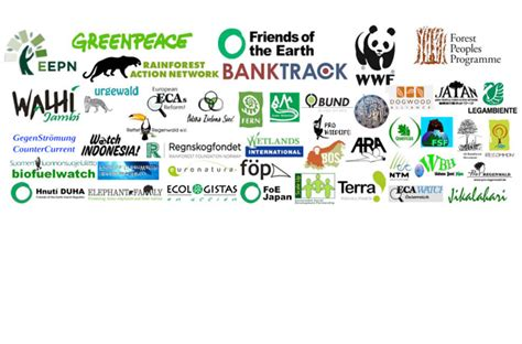 Financial Institution Letter Open Letter To Financial Institutions On Pulp Investment Rainforest Rescue