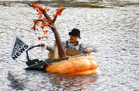 giant pumpkin boat 70 best images about giant pumpkins on pinterest