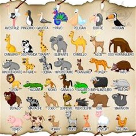 imagenes de zoologico en ingles 1000 images about animals los animales on pinterest