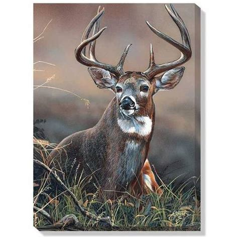 whitetail  guard wrapped canvas art