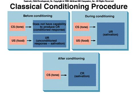 classical conditioning diagram goodpsychology 2nd period ap psychology west bladen
