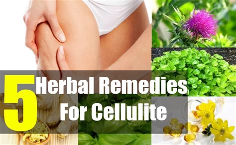5 best herbal remedies for cellulite herbal treatment