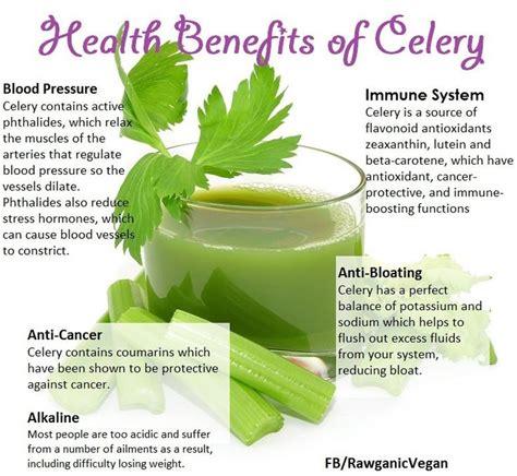 Celery Detox Benefits 62 best benefits of celery images on health
