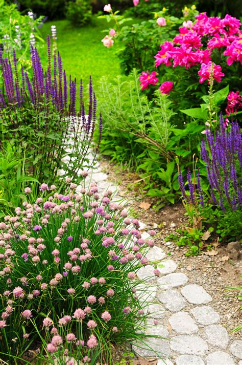 Backyard Flowers by 43 Awesome Garden Paths Digsdigs