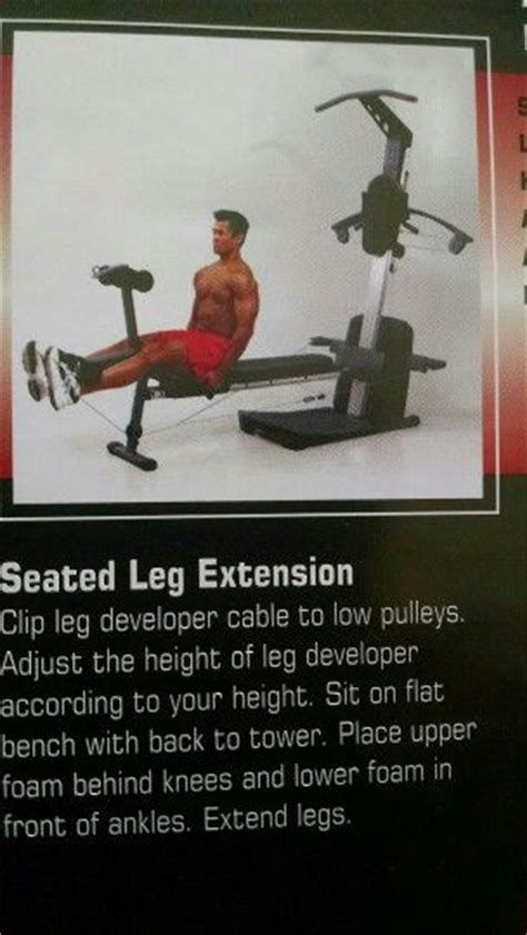 seated leg extension weider crossbow exercises