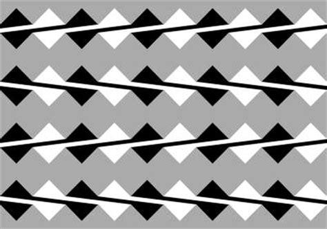 ilusiones opticas lineas paralelas optische illusies