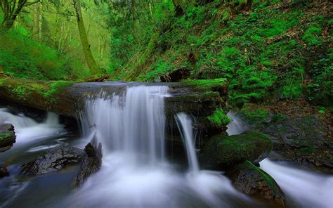 wallpaper river water rocks trees landscape waterfalls wallpaper