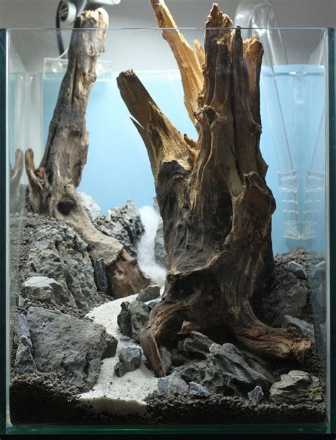 Driftwood Aquascape by 1000 Ideas About Aquascaping On Aquarium