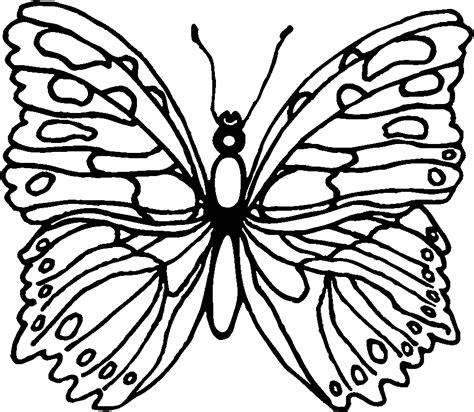 coloring page for butterfly butterfly life cycle coloring pages az coloring pages
