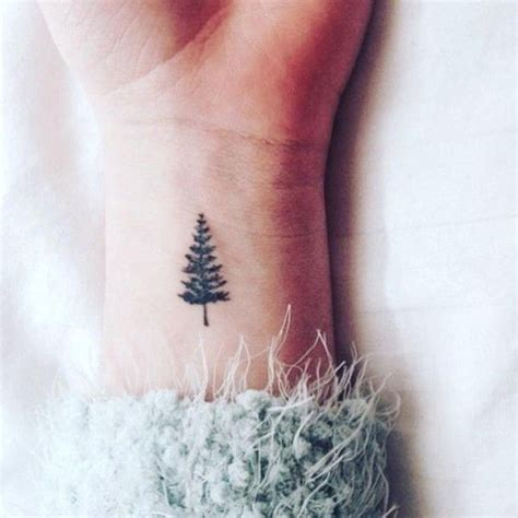 tiny tree tattoo best 25 evergreen ideas on evergreen