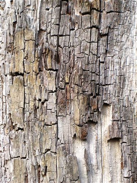 weathered wood by hildads more paper 2