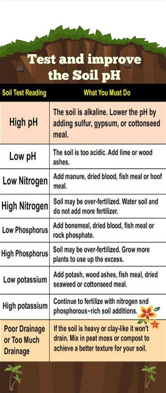 Ph For Vegetable Garden Best 25 Soil Ph Ideas On Garden Soil