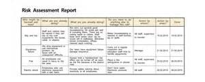 Risk Assessment Report Template Anna