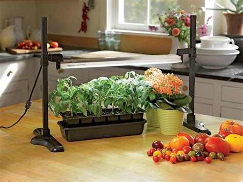 Great Tools For Indoor Gardening Diy Network Blog Made Indoor Vegetable Gardening Supplies